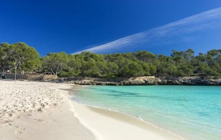 Majorque : juillet/août, séjours 8j/7n en hôtels 3* à 5*, vols inclus