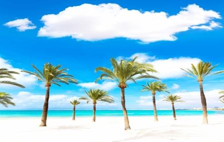 Dernière minute : séjours 8j/7n, Baléares, Mexique, Tunisie, Thaïlande, Canaries...  + vols