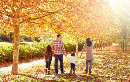 Locations, dispos pont de novembre : 3j/2n ou plus en résidence VVF, Bretagne, Provence...