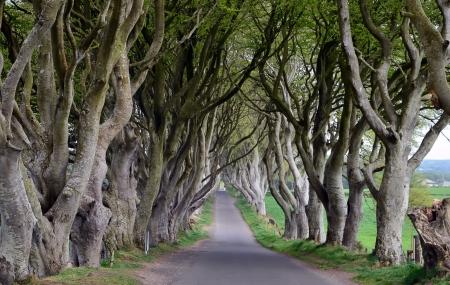 Irlande : circuit personnalisé, 8j/7n sur les traces de Game of Thrones + loc. de voiture