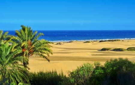 Canaries : séjour 8j/7n en hôtel 3* + demi-pension, - 51%