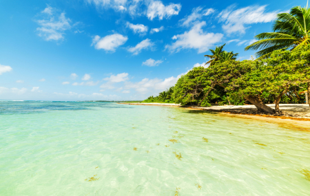 Guadeloupe : locations 1 à 7 nuits entre particuliers