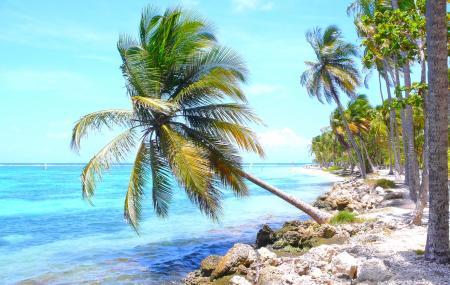 Guadeloupe : vente flash, séjour 9j/7n en résidence bord de mer + vols
