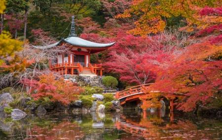 Japon : circuit 12j/9n en hôtels 3* + pension complète + excursions + vols