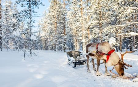 Laponie : séjour 5j/4n en hôtel 3* + petits-déjeuners & vols
