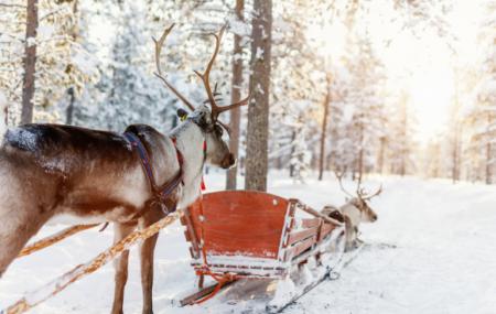 Laponie : séjour 8j/7n + demi-pension + activités + vols