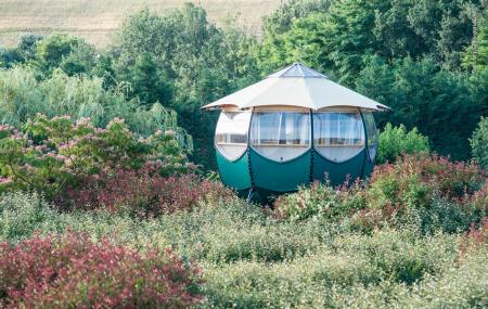 Week-ends insolites, dernière minute : 2j/1n en cabane, yourte, roulotte, tente...