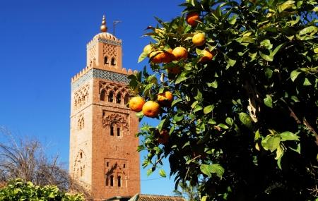 Marrakech : enchère 5j/4n en riad dans la palmeraie + petits-déjeuners + transferts