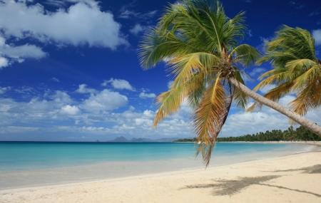 Martinique : séjour 9j/7n en résidence avec piscine + vols & location de voiture
