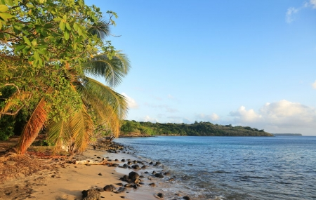 Séjours 7 à 11 nuits au soleil cet hiver, au Maroc, aux Canaries, en Martinique...