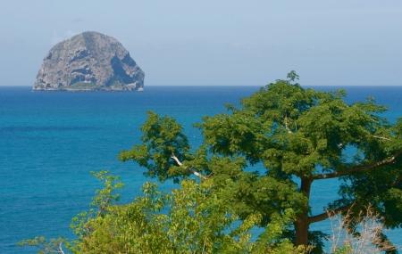 Martinique : vente flash, séjour 9j/7n en résidence, vols inclus