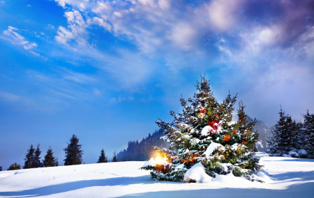 Ski, dispos Noël & Nouvel An : locations 8j/7n en résidence, Alpes & Pyrénées, - 20%