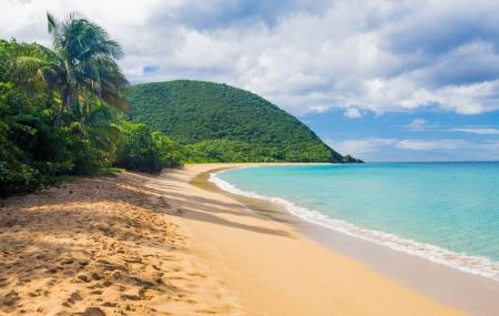 Antilles : vols A/R Air Belgium vers la Guadeloupe & La Martinique dès 429 € !