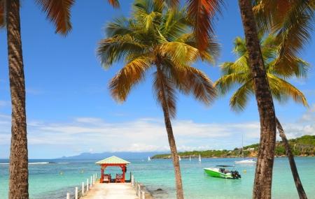 Séjours : déstockage 8j/7n avec des départs en septembre pour Antilles, Canaries, Cuba...