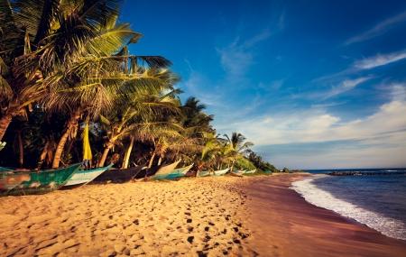 Sri Lanka : enchère, 10j/7n en hôtels 3* avec demi-pension pour 2 pers. + vols A/R