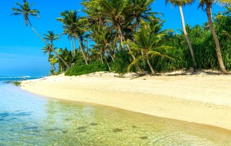 Sri Lanka : séjour 9j/7n en hôtel 4* + petits-déjeuners + vols