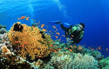 Combiné Mer Rouge & Égypte : vente flash, 2 semaines hôtel 4* + croisière 5*, tout inclus + vols