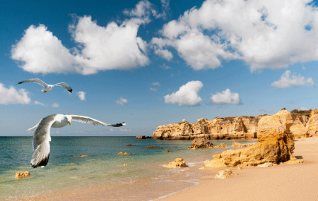 Portugal, Algarve : vente flash, week-end 4j/3n en hôtel 4* + demi-pension + vols, - 55%