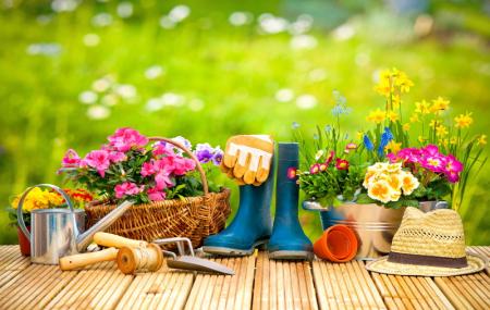Leroy Merlin : promo printemps, produits jardin jusqu'à - 30%