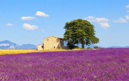 Dernière minute été : location 8j/7n en résidences en France, jusqu'à - 49%