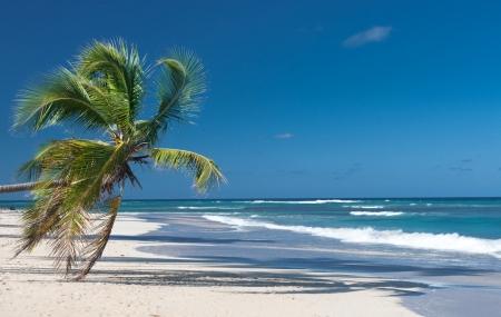 Séjours : soldes, 8j/7n ou 9j/7n en Tunisie, en Martinique... jusqu'à - 67%