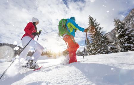 Activités à la neige cet hiver : raquettes, chiens de traîneau, luge, ski de fond...
