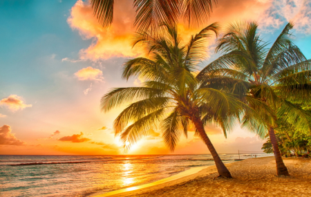Rép. Dominicaine : séjour 9j/7n en hôtel 3* tout compris + vols, - 49%