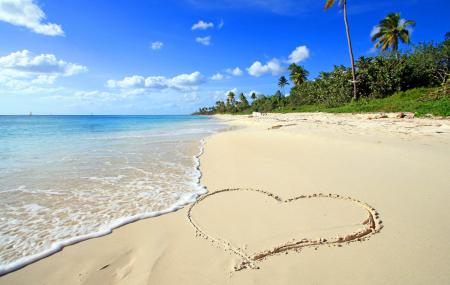 Séjours : vacances de Noël, 8j/7n en Tunisie, Rép. Dominicaine... vols inclus, - 73%