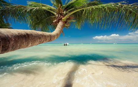 Rep. Dominicaine : séjour 9j/7n en club 4* bord de mer + tout compris + vols & transferts, - 11%