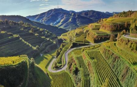 Week-ends dégustation : 2j/1n en Provence, Alsace, Val de Loire, Bourgogne...