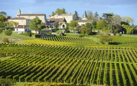 Bordeaux : oenotourisme, visite & dégustation autour des vignobles