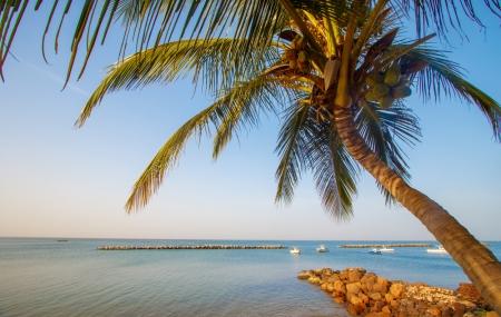 Sénégal : séjour 9j/7n en hôtel 3* + petits-déjeuners, vols inclus