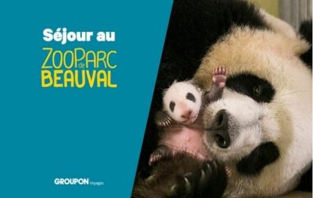 Zoo de Beauval : 2j/1n aux Pagodes de Beauval 3* + petit-déjeuner + entrée 2 jours au Zoo