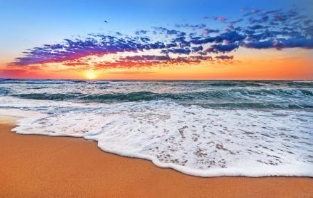 Canaries : 8j/7n en hôtels avec vols inclus, pension selon les offres, jusqu'à - 150 €