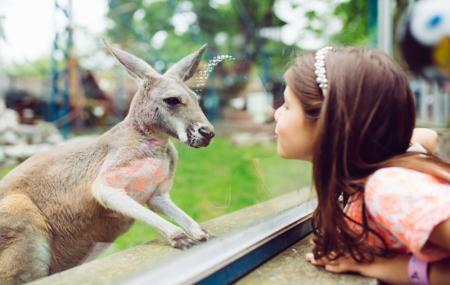 Zoo de Thoiry, Île de France : week-end 2j/1n en hôtel 3* + petit-déjeuner + entrée au parc, - 30%