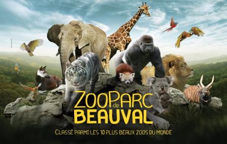 Zoo de Beauval : billetterie adulte et enfant, 1 ou 2 jours, valable un an