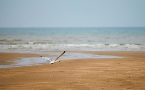Les 10 plus belles plages de la Côte Atlantique - La plage du Golf