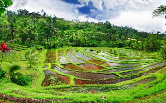 10 voyages à faire en couple - Bali, Indonésie