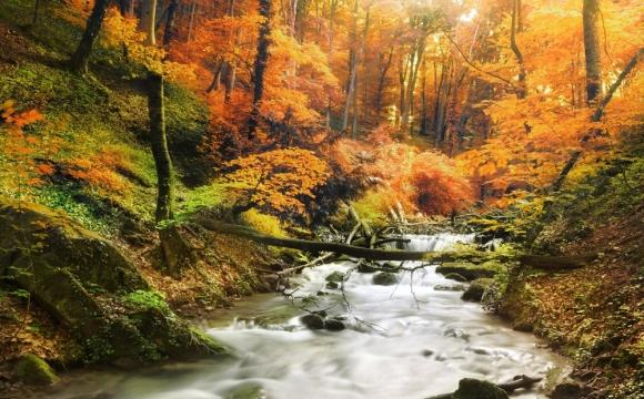 Les 10 plus beaux paysages d'automne - CANADA