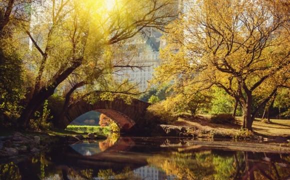 Les 10 plus beaux paysages d'automne - NEW-YORK