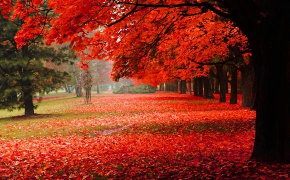Les 10 plus beaux paysages d'automne - RÉPUBLIQUE TCHEQUE