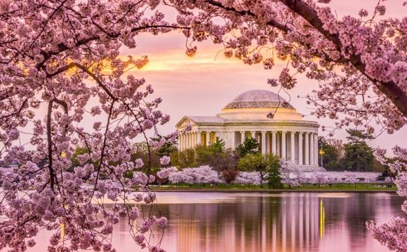 Washington : A la découverte du berceau de l'indépendance américaine  - Côté météo !