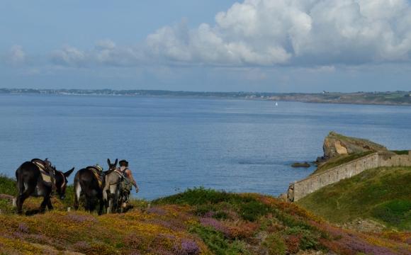 10 actvités insolites à tester durant les vacances d'été - Une balade en âne