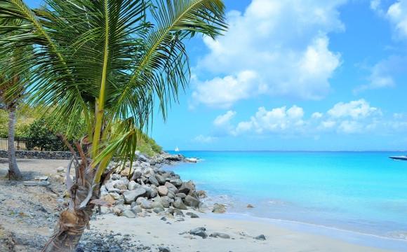 Location de voiture en Martinique : nos conseils ! -  Quand réserver sa location de voiture en Martinique ?