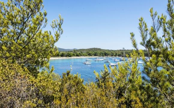 10 visites inratables sur la Côte d'Azur - Bormes les mimosas