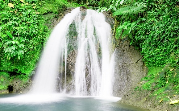 Top 10 des activités à faire en Guadeloupe - Découvrez des rivières et cascades