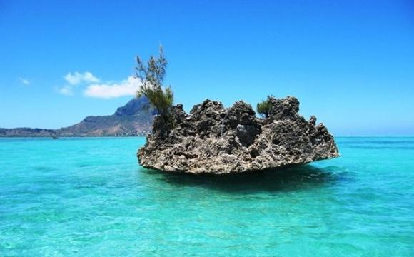L'île aux Bénitiers