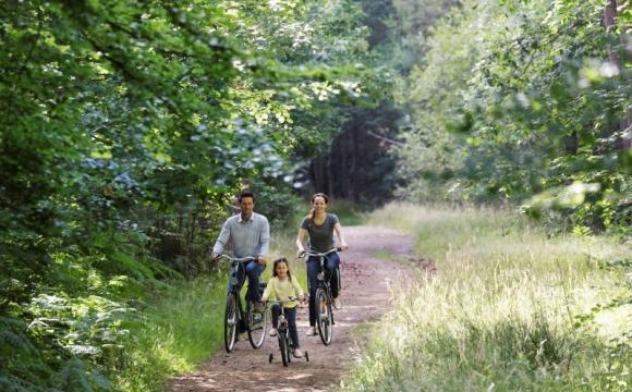 Les Bois-Francs, le domaine Center Parcs idéal pour se détendre - Un écrin de verdure à 1h30 de Paris