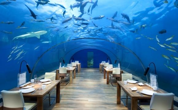 10 restaurants situés dans des endroits sensationnels -  Le Conrad