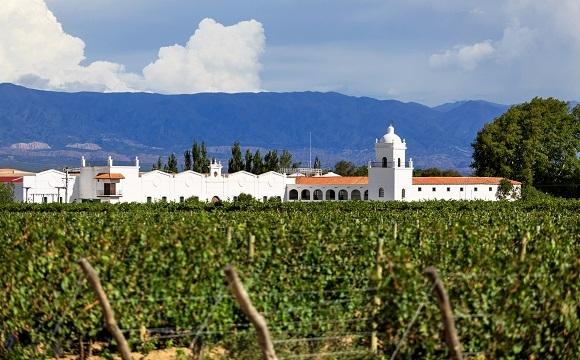Les 10 raisons de visiter l'Argentine  -  La longue route des vins
